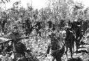 死亡之旅|中国远征军败走野人山纪实