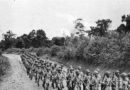 《浩气满乾坤–第二次世界大战中缅印战区抗战老兵口述历史》