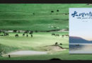 大理电影展举行 张杨《大理的声音》需用心观看