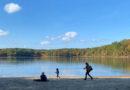 张慈散文丨瓦尔登湖, 不是湖