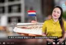 丽莉: 荷兰必吃10个小食(视频)