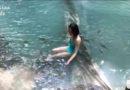Freesiaa: 曼谷逛吃,  还有个可以和鱼一起游泳的国家公园